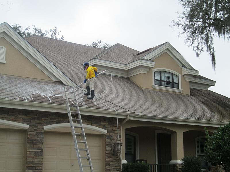 Hammerhead Pressure Washing Roof Cleaning Softwashing