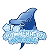 Hammerhead Softwash